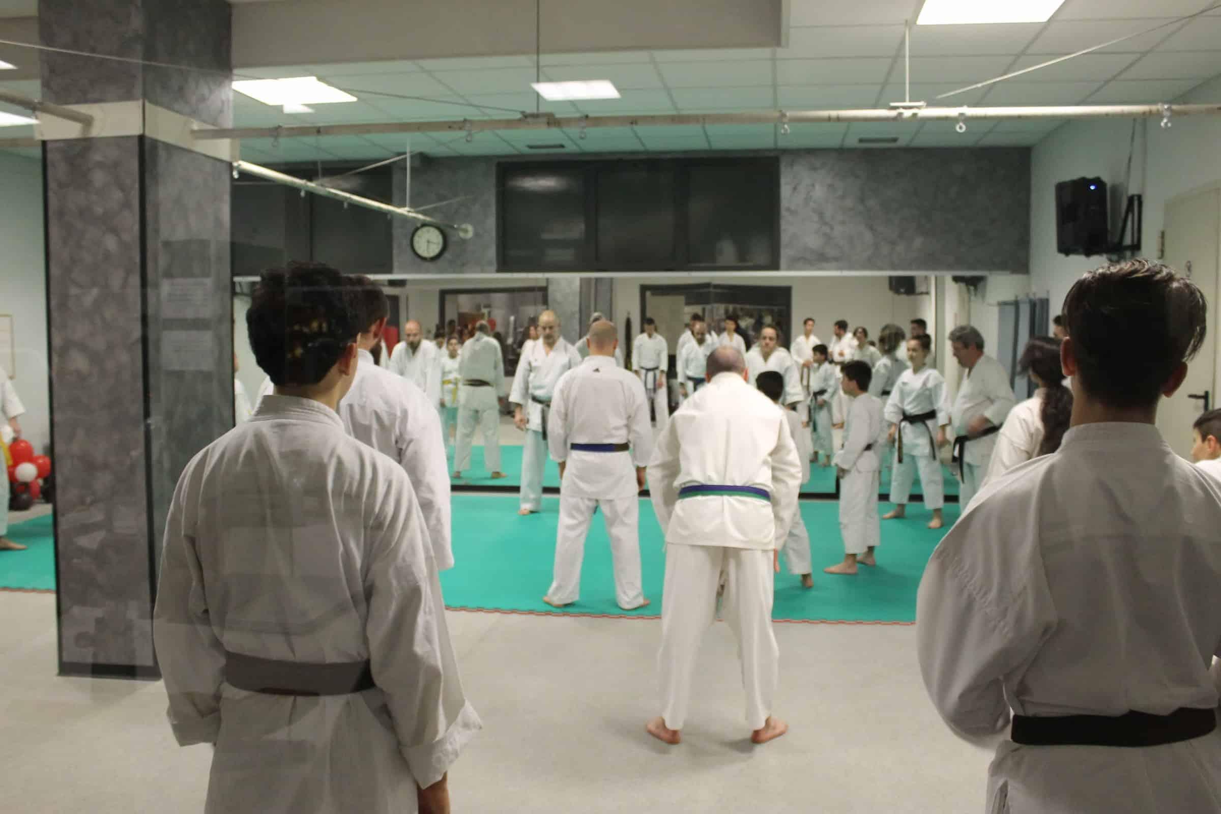 karate-adulti
