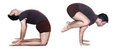 Nair Yoga_cal